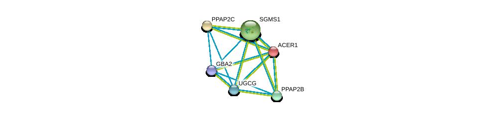 http://string-db.org/version_10/api/image/networkList?limit=0&targetmode=proteins&caller_identity=gene_cards&network_flavor=evidence&identifiers=9606.ENSP00000301452%0d%0a9606.ENSP00000354829%0d%0a9606.ENSP00000329697%0d%0a9606.ENSP00000360296%0d%0a9606.ENSP00000363397%0d%0a9606.ENSP00000367343%0d%0a