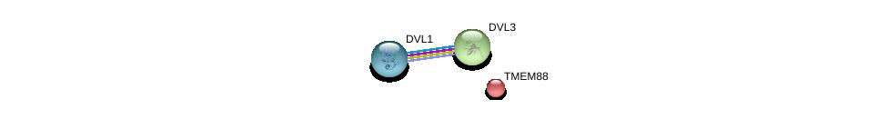 http://string-db.org/version_10/api/image/networkList?limit=0&targetmode=proteins&caller_identity=gene_cards&network_flavor=evidence&identifiers=9606.ENSP00000301599%0d%0a9606.ENSP00000368169%0d%0a9606.ENSP00000316054%0d%0a