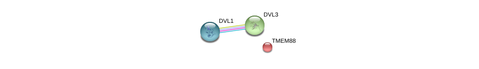 http://string-db.org/version_10/api/image/networkList?limit=0&targetmode=proteins&caller_identity=gene_cards&network_flavor=evidence&identifiers=9606.ENSP00000301599%0d%0a9606.ENSP00000368169%0d%0a9606.ENSP00000368169%0d%0a9606.ENSP00000316054%0d%0a