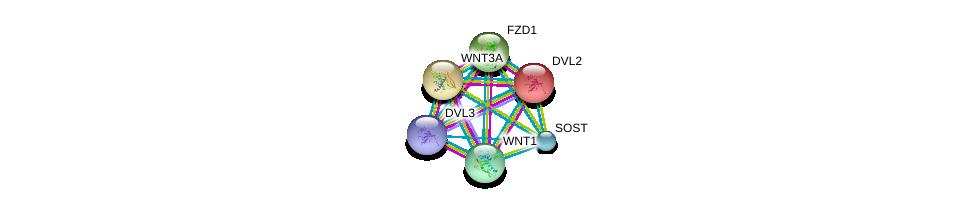 http://string-db.org/version_10/api/image/networkList?limit=0&targetmode=proteins&caller_identity=gene_cards&network_flavor=evidence&identifiers=9606.ENSP00000301691%0d%0a9606.ENSP00000005340%0d%0a9606.ENSP00000284523%0d%0a9606.ENSP00000287934%0d%0a9606.ENSP00000293549%0d%0a9606.ENSP00000316054%0d%0a