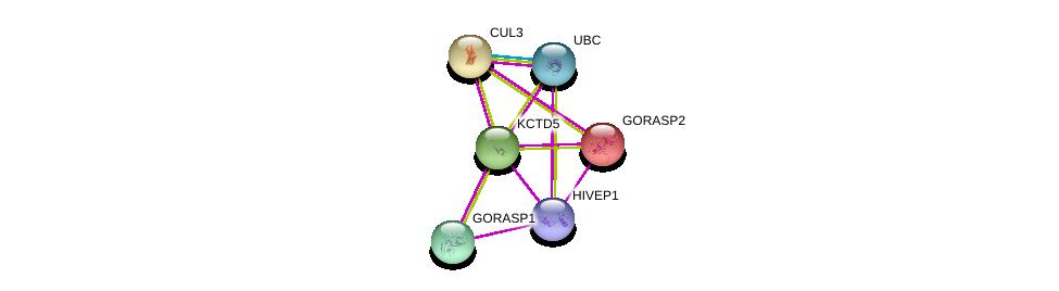 http://string-db.org/version_10/api/image/networkList?limit=0&targetmode=proteins&caller_identity=gene_cards&network_flavor=evidence&identifiers=9606.ENSP00000301738%0d%0a9606.ENSP00000234160%0d%0a9606.ENSP00000344818%0d%0a9606.ENSP00000264414%0d%0a9606.ENSP00000368698%0d%0a9606.ENSP00000313869%0d%0a