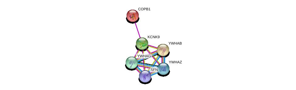 http://string-db.org/version_10/api/image/networkList?limit=0&targetmode=proteins&caller_identity=gene_cards&network_flavor=evidence&identifiers=9606.ENSP00000302166%0d%0a9606.ENSP00000300161%0d%0a9606.ENSP00000249923%0d%0a9606.ENSP00000340989%0d%0a9606.ENSP00000309503%0d%0a9606.ENSP00000306330%0d%0a