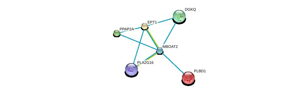 http://string-db.org/version_10/api/image/networkList?limit=0&targetmode=proteins&caller_identity=gene_cards&network_flavor=evidence&identifiers=9606.ENSP00000302177%0d%0a9606.ENSP00000240617%0d%0a9606.ENSP00000260585%0d%0a9606.ENSP00000264775%0d%0a9606.ENSP00000273814%0d%0a9606.ENSP00000320337%0d%0a