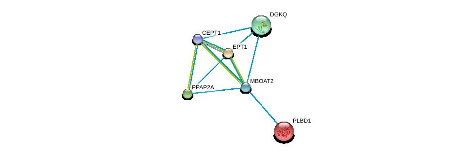http://string-db.org/version_10/api/image/networkList?limit=0&targetmode=proteins&caller_identity=gene_cards&network_flavor=evidence&identifiers=9606.ENSP00000302177%0d%0a9606.ENSP00000349696%0d%0a9606.ENSP00000240617%0d%0a9606.ENSP00000260585%0d%0a9606.ENSP00000264775%0d%0a9606.ENSP00000273814%0d%0a