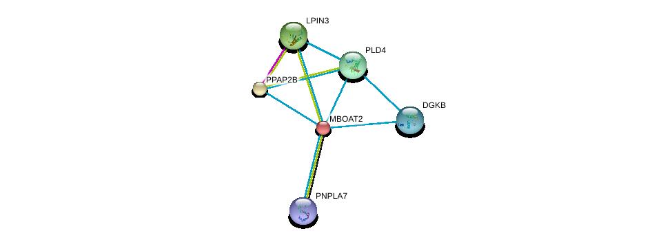 http://string-db.org/version_10/api/image/networkList?limit=0&targetmode=proteins&caller_identity=gene_cards&network_flavor=evidence&identifiers=9606.ENSP00000302177%0d%0a9606.ENSP00000360296%0d%0a9606.ENSP00000362354%0d%0a9606.ENSP00000376372%0d%0a9606.ENSP00000382260%0d%0a9606.ENSP00000384610%0d%0a