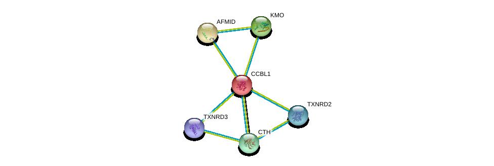 http://string-db.org/version_10/api/image/networkList?limit=0&targetmode=proteins&caller_identity=gene_cards&network_flavor=evidence&identifiers=9606.ENSP00000302227%0d%0a9606.ENSP00000328938%0d%0a9606.ENSP00000355517%0d%0a9606.ENSP00000359976%0d%0a9606.ENSP00000383365%0d%0a9606.ENSP00000430031%0d%0a
