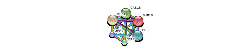 http://string-db.org/version_10/api/image/networkList?limit=0&targetmode=proteins&caller_identity=gene_cards&network_flavor=evidence&identifiers=9606.ENSP00000302530%0d%0a9606.ENSP00000335463%0d%0a9606.ENSP00000287598%0d%0a9606.ENSP00000357858%0d%0a9606.ENSP00000355944%0d%0a9606.ENSP00000370557%0d%0a