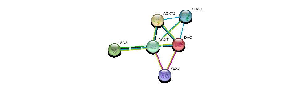 http://string-db.org/version_10/api/image/networkList?limit=0&targetmode=proteins&caller_identity=gene_cards&network_flavor=evidence&identifiers=9606.ENSP00000302620%0d%0a9606.ENSP00000407401%0d%0a9606.ENSP00000231420%0d%0a9606.ENSP00000228476%0d%0a9606.ENSP00000257549%0d%0a9606.ENSP00000309259%0d%0a