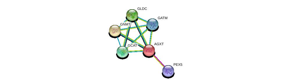 http://string-db.org/version_10/api/image/networkList?limit=0&targetmode=proteins&caller_identity=gene_cards&network_flavor=evidence&identifiers=9606.ENSP00000302620%0d%0a9606.ENSP00000407401%0d%0a9606.ENSP00000379895%0d%0a9606.ENSP00000371110%0d%0a9606.ENSP00000370737%0d%0a9606.ENSP00000361894%0d%0a