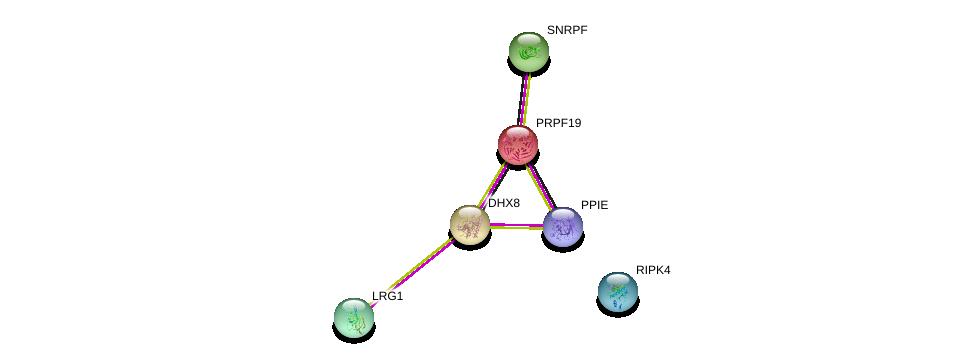 http://string-db.org/version_10/api/image/networkList?limit=0&targetmode=proteins&caller_identity=gene_cards&network_flavor=evidence&identifiers=9606.ENSP00000302621%0d%0a9606.ENSP00000361918%0d%0a9606.ENSP00000262415%0d%0a9606.ENSP00000332454%0d%0a9606.ENSP00000266735%0d%0a9606.ENSP00000227524%0d%0a