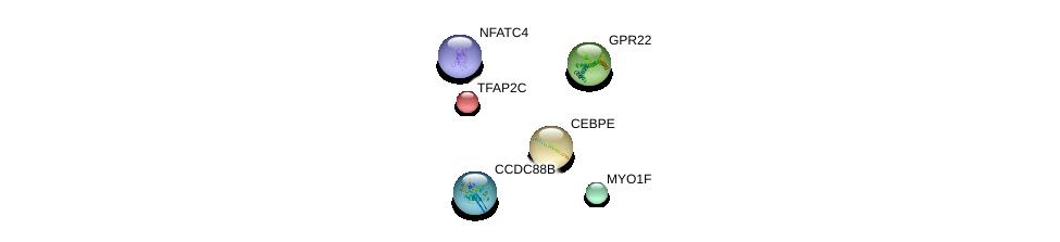 http://string-db.org/version_10/api/image/networkList?limit=0&targetmode=proteins&caller_identity=gene_cards&network_flavor=evidence&identifiers=9606.ENSP00000302676%0d%0a9606.ENSP00000201031%0d%0a9606.ENSP00000206513%0d%0a9606.ENSP00000388910%0d%0a9606.ENSP00000349238%0d%0a9606.ENSP00000344871%0d%0a