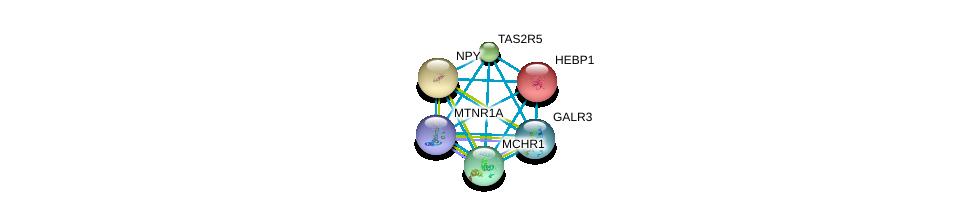 http://string-db.org/version_10/api/image/networkList?limit=0&targetmode=proteins&caller_identity=gene_cards&network_flavor=evidence&identifiers=9606.ENSP00000302811%0d%0a9606.ENSP00000014930%0d%0a9606.ENSP00000242152%0d%0a9606.ENSP00000247883%0d%0a9606.ENSP00000249016%0d%0a9606.ENSP00000249041%0d%0a