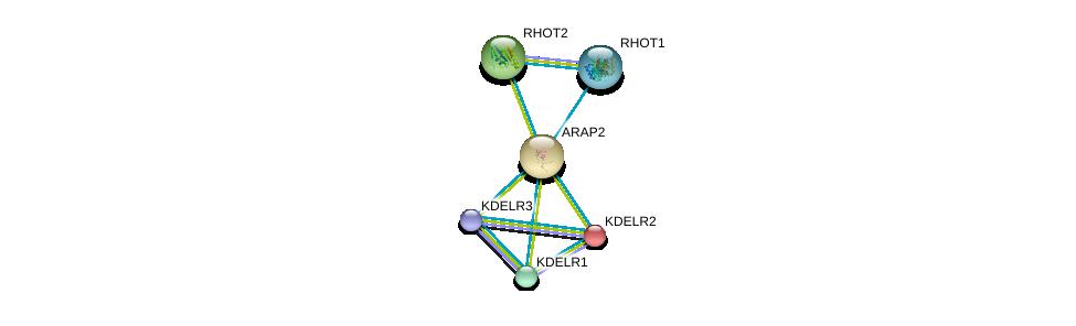 http://string-db.org/version_10/api/image/networkList?limit=0&targetmode=proteins&caller_identity=gene_cards&network_flavor=evidence&identifiers=9606.ENSP00000302895%0d%0a9606.ENSP00000386918%0d%0a9606.ENSP00000258739%0d%0a9606.ENSP00000329471%0d%0a9606.ENSP00000351132%0d%0a9606.ENSP00000321971%0d%0a