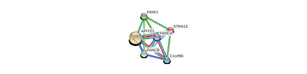 http://string-db.org/version_10/api/image/networkList?limit=0&targetmode=proteins&caller_identity=gene_cards&network_flavor=evidence&identifiers=9606.ENSP00000302951%0d%0a9606.ENSP00000308583%0d%0a9606.ENSP00000367808%0d%0a9606.ENSP00000326819%0d%0a9606.ENSP00000373952%0d%0a9606.ENSP00000310842%0d%0a
