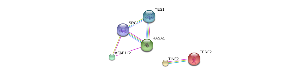 http://string-db.org/version_10/api/image/networkList?limit=0&targetmode=proteins&caller_identity=gene_cards&network_flavor=evidence&identifiers=9606.ENSP00000303042%0d%0a9606.ENSP00000350941%0d%0a9606.ENSP00000274376%0d%0a9606.ENSP00000324740%0d%0a9606.ENSP00000254942%0d%0a9606.ENSP00000267415%0d%0a