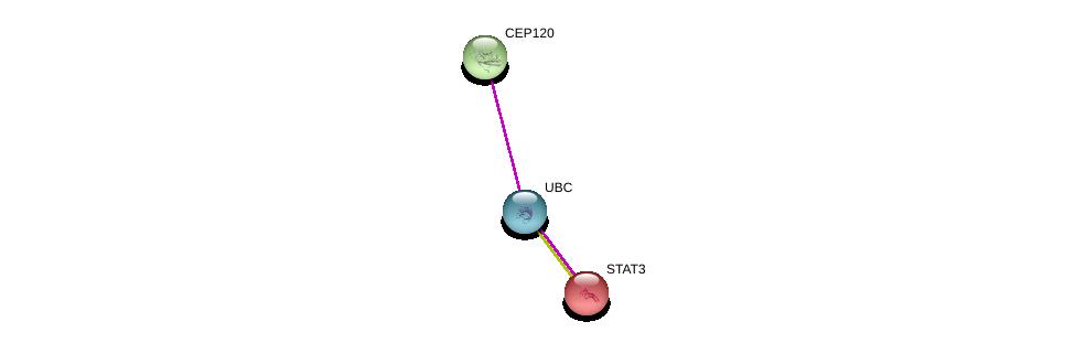 http://string-db.org/version_10/api/image/networkList?limit=0&targetmode=proteins&caller_identity=gene_cards&network_flavor=evidence&identifiers=9606.ENSP00000303058%0d%0a9606.ENSP00000344818%0d%0a9606.ENSP00000264657%0d%0a