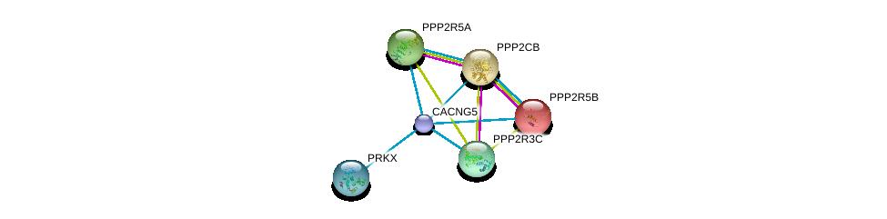 http://string-db.org/version_10/api/image/networkList?limit=0&targetmode=proteins&caller_identity=gene_cards&network_flavor=evidence&identifiers=9606.ENSP00000303092%0d%0a9606.ENSP00000164133%0d%0a9606.ENSP00000221138%0d%0a9606.ENSP00000261461%0d%0a9606.ENSP00000261475%0d%0a9606.ENSP00000262848%0d%0a