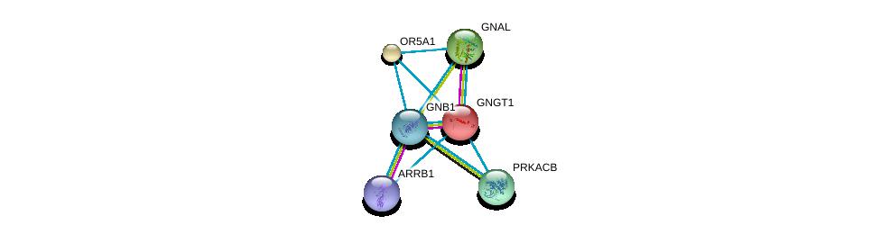 http://string-db.org/version_10/api/image/networkList?limit=0&targetmode=proteins&caller_identity=gene_cards&network_flavor=evidence&identifiers=9606.ENSP00000303096%0d%0a9606.ENSP00000334051%0d%0a9606.ENSP00000248572%0d%0a9606.ENSP00000367869%0d%0a9606.ENSP00000409581%0d%0a9606.ENSP00000359719%0d%0a