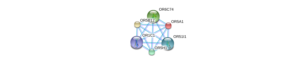 http://string-db.org/version_10/api/image/networkList?limit=0&targetmode=proteins&caller_identity=gene_cards&network_flavor=evidence&identifiers=9606.ENSP00000303096%0d%0a9606.ENSP00000369559%0d%0a9606.ENSP00000306657%0d%0a9606.ENSP00000386138%0d%0a9606.ENSP00000342836%0d%0a9606.ENSP00000346575%0d%0a
