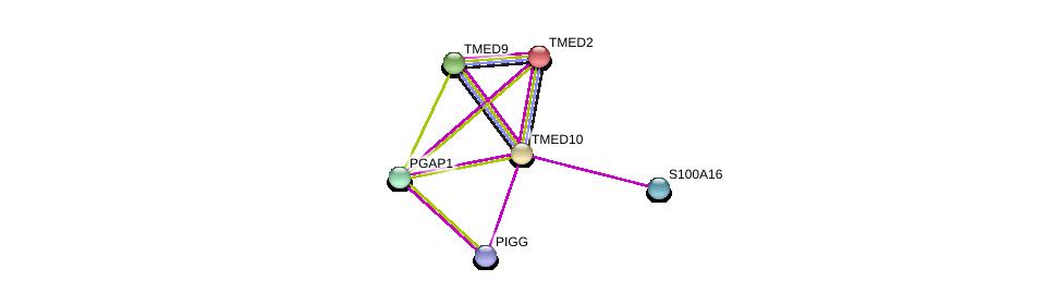 http://string-db.org/version_10/api/image/networkList?limit=0&targetmode=proteins&caller_identity=gene_cards&network_flavor=evidence&identifiers=9606.ENSP00000303145%0d%0a9606.ENSP00000262225%0d%0a9606.ENSP00000330945%0d%0a9606.ENSP00000346809%0d%0a9606.ENSP00000415203%0d%0a9606.ENSP00000357692%0d%0a
