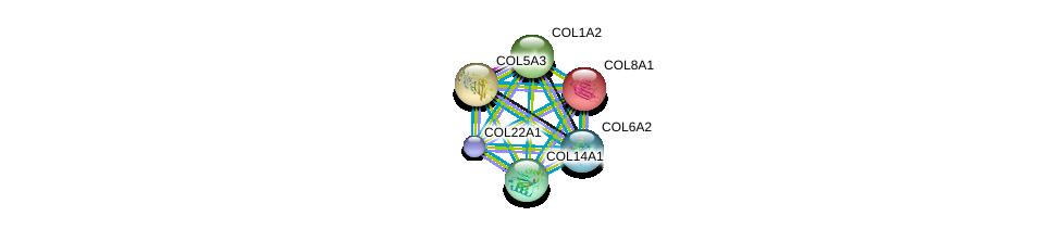 http://string-db.org/version_10/api/image/networkList?limit=0&targetmode=proteins&caller_identity=gene_cards&network_flavor=evidence&identifiers=9606.ENSP00000303153%0d%0a9606.ENSP00000261037%0d%0a9606.ENSP00000264828%0d%0a9606.ENSP00000297268%0d%0a9606.ENSP00000297848%0d%0a9606.ENSP00000300527%0d%0a