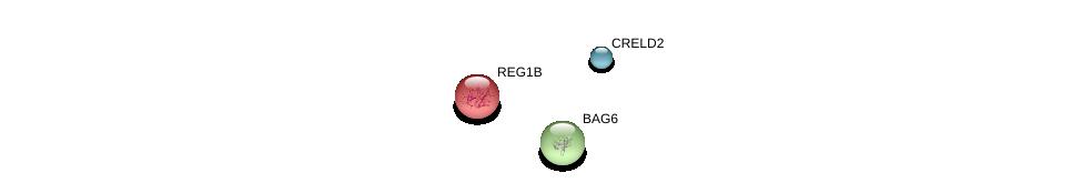 http://string-db.org/version_10/api/image/networkList?limit=0&targetmode=proteins&caller_identity=gene_cards&network_flavor=evidence&identifiers=9606.ENSP00000303206%0d%0a9606.ENSP00000365131%0d%0a9606.ENSP00000383938%0d%0a