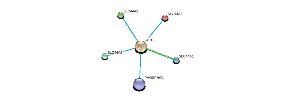 http://string-db.org/version_10/api/image/networkList?limit=0&targetmode=proteins&caller_identity=gene_cards&network_flavor=evidence&identifiers=9606.ENSP00000303211%0d%0a9606.ENSP00000271227%0d%0a9606.ENSP00000336888%0d%0a9606.ENSP00000359892%0d%0a9606.ENSP00000363852%0d%0a9606.ENSP00000406909%0d%0a