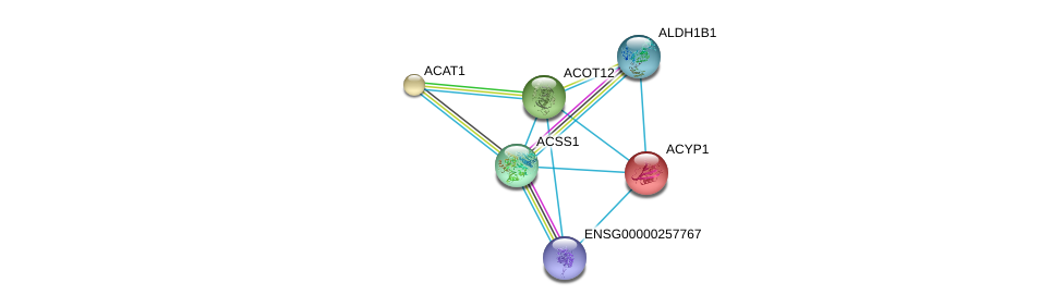 http://string-db.org/version_10/api/image/networkList?limit=0&targetmode=proteins&caller_identity=gene_cards&network_flavor=evidence&identifiers=9606.ENSP00000303246%0d%0a9606.ENSP00000366927%0d%0a9606.ENSP00000238618%0d%0a9606.ENSP00000265838%0d%0a9606.ENSP00000316924%0d%0a9606.ENSP00000450353%0d%0a