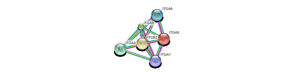 http://string-db.org/version_10/api/image/networkList?limit=0&targetmode=proteins&caller_identity=gene_cards&network_flavor=evidence&identifiers=9606.ENSP00000303351%0d%0a9606.ENSP00000293379%0d%0a9606.ENSP00000367316%0d%0a9606.ENSP00000386896%0d%0a9606.ENSP00000452120%0d%0a9606.ENSP00000380227%0d%0a