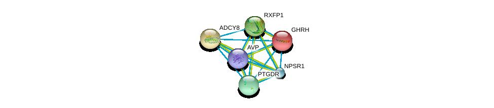 http://string-db.org/version_10/api/image/networkList?limit=0&targetmode=proteins&caller_identity=gene_cards&network_flavor=evidence&identifiers=9606.ENSP00000303424%0d%0a9606.ENSP00000237527%0d%0a9606.ENSP00000369647%0d%0a9606.ENSP00000352839%0d%0a9606.ENSP00000303248%0d%0a9606.ENSP00000286355%0d%0a