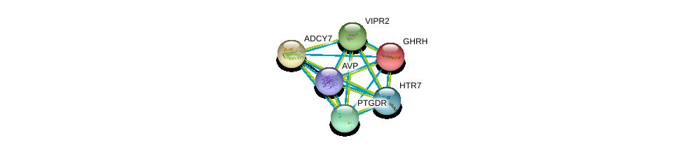 http://string-db.org/version_10/api/image/networkList?limit=0&targetmode=proteins&caller_identity=gene_cards&network_flavor=evidence&identifiers=9606.ENSP00000303424%0d%0a9606.ENSP00000369647%0d%0a9606.ENSP00000237527%0d%0a9606.ENSP00000262178%0d%0a9606.ENSP00000254235%0d%0a9606.ENSP00000337949%0d%0a