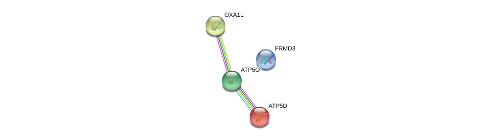 http://string-db.org/version_10/api/image/networkList?limit=0&targetmode=proteins&caller_identity=gene_cards&network_flavor=evidence&identifiers=9606.ENSP00000303508%0d%0a9606.ENSP00000215375%0d%0a9606.ENSP00000290299%0d%0a9606.ENSP00000285848%0d%0a