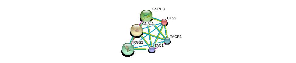 http://string-db.org/version_10/api/image/networkList?limit=0&targetmode=proteins&caller_identity=gene_cards&network_flavor=evidence&identifiers=9606.ENSP00000303522%0d%0a9606.ENSP00000321106%0d%0a9606.ENSP00000054668%0d%0a9606.ENSP00000078429%0d%0a9606.ENSP00000226413%0d%0a9606.ENSP00000235382%0d%0a