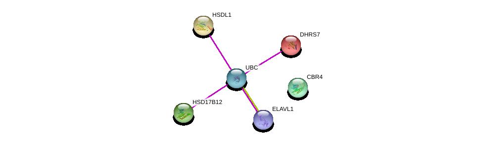 http://string-db.org/version_10/api/image/networkList?limit=0&targetmode=proteins&caller_identity=gene_cards&network_flavor=evidence&identifiers=9606.ENSP00000303525%0d%0a9606.ENSP00000385269%0d%0a9606.ENSP00000344818%0d%0a9606.ENSP00000216500%0d%0a9606.ENSP00000219439%0d%0a9606.ENSP00000278353%0d%0a