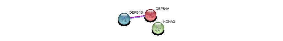 http://string-db.org/version_10/api/image/networkList?limit=0&targetmode=proteins&caller_identity=gene_cards&network_flavor=evidence&identifiers=9606.ENSP00000303532%0d%0a9606.ENSP00000424598%0d%0a9606.ENSP00000358784%0d%0a