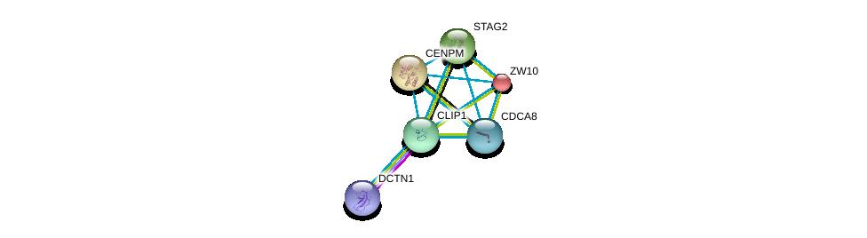 http://string-db.org/version_10/api/image/networkList?limit=0&targetmode=proteins&caller_identity=gene_cards&network_flavor=evidence&identifiers=9606.ENSP00000303585%0d%0a9606.ENSP00000354791%0d%0a9606.ENSP00000316121%0d%0a9606.ENSP00000200135%0d%0a9606.ENSP00000215980%0d%0a9606.ENSP00000218089%0d%0a