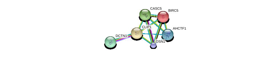 http://string-db.org/version_10/api/image/networkList?limit=0&targetmode=proteins&caller_identity=gene_cards&network_flavor=evidence&identifiers=9606.ENSP00000303585%0d%0a9606.ENSP00000354791%0d%0a9606.ENSP00000362850%0d%0a9606.ENSP00000335463%0d%0a9606.ENSP00000355465%0d%0a9606.ENSP00000301633%0d%0a