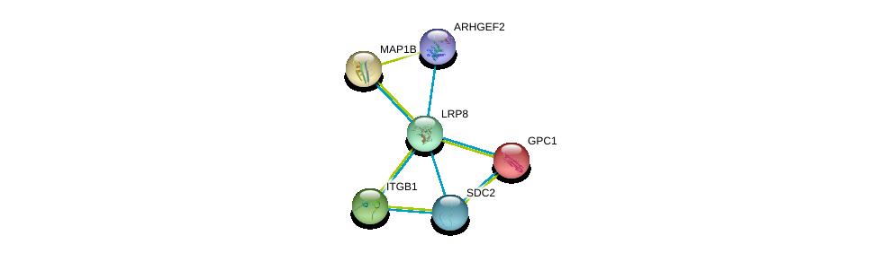 http://string-db.org/version_10/api/image/networkList?limit=0&targetmode=proteins&caller_identity=gene_cards&network_flavor=evidence&identifiers=9606.ENSP00000303634%0d%0a9606.ENSP00000307046%0d%0a9606.ENSP00000264039%0d%0a9606.ENSP00000303351%0d%0a9606.ENSP00000296755%0d%0a9606.ENSP00000354837%0d%0a