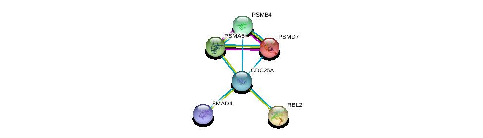 http://string-db.org/version_10/api/image/networkList?limit=0&targetmode=proteins&caller_identity=gene_cards&network_flavor=evidence&identifiers=9606.ENSP00000303706%0d%0a9606.ENSP00000290541%0d%0a9606.ENSP00000219313%0d%0a9606.ENSP00000341551%0d%0a9606.ENSP00000271308%0d%0a9606.ENSP00000262133%0d%0a