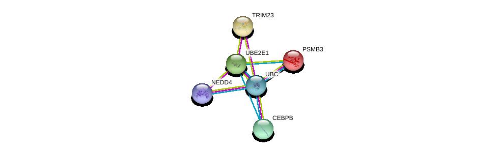 http://string-db.org/version_10/api/image/networkList?limit=0&targetmode=proteins&caller_identity=gene_cards&network_flavor=evidence&identifiers=9606.ENSP00000303709%0d%0a9606.ENSP00000344818%0d%0a9606.ENSP00000345530%0d%0a9606.ENSP00000231524%0d%0a9606.ENSP00000305422%0d%0a9606.ENSP00000225426%0d%0a