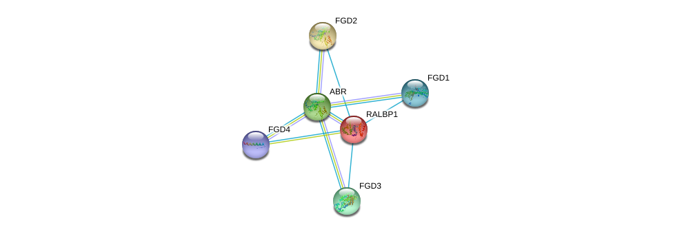 http://string-db.org/version_10/api/image/networkList?limit=0&targetmode=proteins&caller_identity=gene_cards&network_flavor=evidence&identifiers=9606.ENSP00000303909%0d%0a9606.ENSP00000274963%0d%0a9606.ENSP00000336914%0d%0a9606.ENSP00000364277%0d%0a9606.ENSP00000394487%0d%0a9606.ENSP00000019317%0d%0a