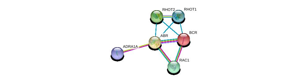 http://string-db.org/version_10/api/image/networkList?limit=0&targetmode=proteins&caller_identity=gene_cards&network_flavor=evidence&identifiers=9606.ENSP00000303909%0d%0a9606.ENSP00000321971%0d%0a9606.ENSP00000351132%0d%0a9606.ENSP00000369960%0d%0a9606.ENSP00000303507%0d%0a9606.ENSP00000348461%0d%0a