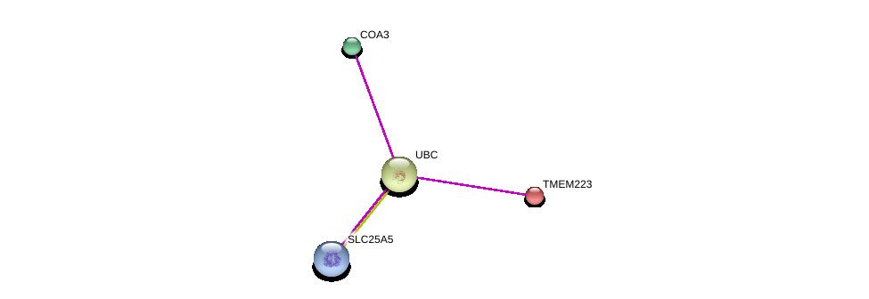 http://string-db.org/version_10/api/image/networkList?limit=0&targetmode=proteins&caller_identity=gene_cards&network_flavor=evidence&identifiers=9606.ENSP00000303987%0d%0a9606.ENSP00000344818%0d%0a9606.ENSP00000360671%0d%0a9606.ENSP00000354762%0d%0a