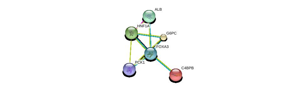 http://string-db.org/version_10/api/image/networkList?limit=0&targetmode=proteins&caller_identity=gene_cards&network_flavor=evidence&identifiers=9606.ENSP00000304004%0d%0a9606.ENSP00000253801%0d%0a9606.ENSP00000319814%0d%0a9606.ENSP00000295897%0d%0a9606.ENSP00000257555%0d%0a9606.ENSP00000243611%0d%0a