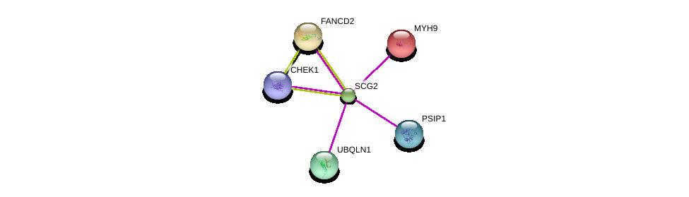 http://string-db.org/version_10/api/image/networkList?limit=0&targetmode=proteins&caller_identity=gene_cards&network_flavor=evidence&identifiers=9606.ENSP00000304133%0d%0a9606.ENSP00000365576%0d%0a9606.ENSP00000388648%0d%0a9606.ENSP00000287647%0d%0a9606.ENSP00000216181%0d%0a9606.ENSP00000370109%0d%0a