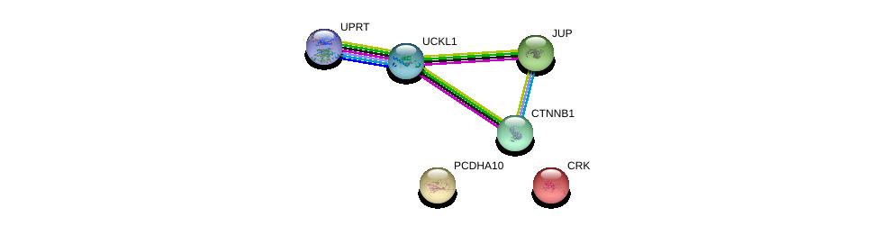 http://string-db.org/version_10/api/image/networkList?limit=0&targetmode=proteins&caller_identity=gene_cards&network_flavor=evidence&identifiers=9606.ENSP00000304234%0d%0a9606.ENSP00000300574%0d%0a9606.ENSP00000311113%0d%0a9606.ENSP00000344456%0d%0a9606.ENSP00000346155%0d%0a9606.ENSP00000362481%0d%0a