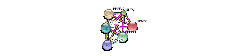 http://string-db.org/version_10/api/image/networkList?limit=0&targetmode=proteins&caller_identity=gene_cards&network_flavor=evidence&identifiers=9606.ENSP00000304370%0d%0a9606.ENSP00000227524%0d%0a9606.ENSP00000360525%0d%0a9606.ENSP00000199814%0d%0a9606.ENSP00000261531%0d%0a9606.ENSP00000304350%0d%0a