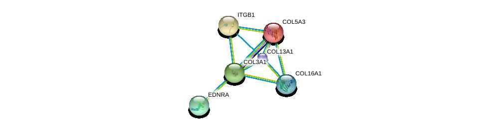 http://string-db.org/version_10/api/image/networkList?limit=0&targetmode=proteins&caller_identity=gene_cards&network_flavor=evidence&identifiers=9606.ENSP00000304408%0d%0a9606.ENSP00000303351%0d%0a9606.ENSP00000264828%0d%0a9606.ENSP00000315011%0d%0a9606.ENSP00000381949%0d%0a9606.ENSP00000362776%0d%0a