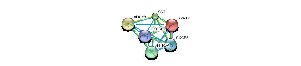 http://string-db.org/version_10/api/image/networkList?limit=0&targetmode=proteins&caller_identity=gene_cards&network_flavor=evidence&identifiers=9606.ENSP00000304414%0d%0a9606.ENSP00000286355%0d%0a9606.ENSP00000287641%0d%0a9606.ENSP00000287907%0d%0a9606.ENSP00000292174%0d%0a9606.ENSP00000272644%0d%0a