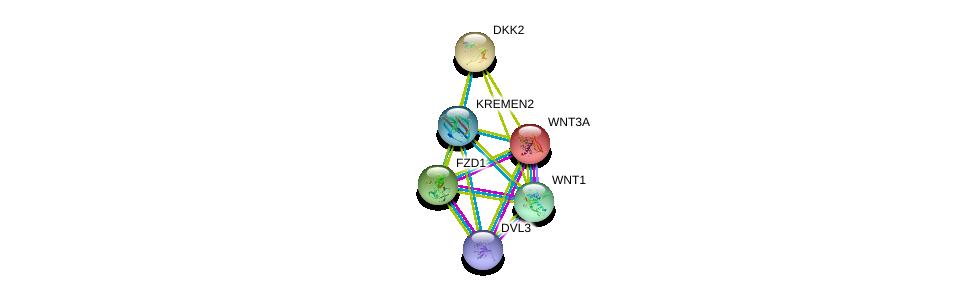 http://string-db.org/version_10/api/image/networkList?limit=0&targetmode=proteins&caller_identity=gene_cards&network_flavor=evidence&identifiers=9606.ENSP00000304422%0d%0a9606.ENSP00000287934%0d%0a9606.ENSP00000293549%0d%0a9606.ENSP00000285311%0d%0a9606.ENSP00000284523%0d%0a9606.ENSP00000316054%0d%0a